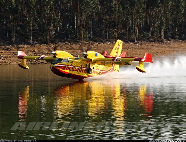 Canadair CL-215-6B11 CL-415 aircraft picture