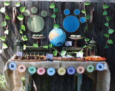 Wild Kratts party ideas from PBSkids