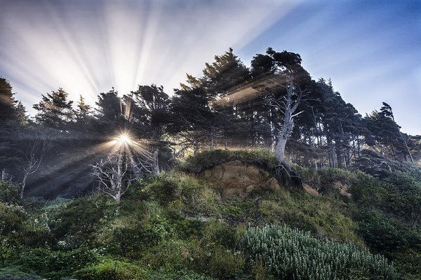 This photograph was taken along the coast in Oregon after the sun had broken the horizon.#outdoor #photooftheday #oregoncoast