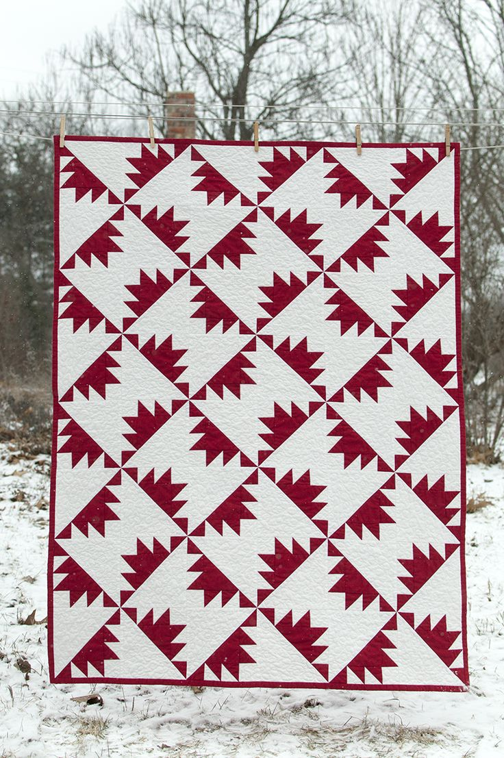 2014 The Year of the Red and White Quilt