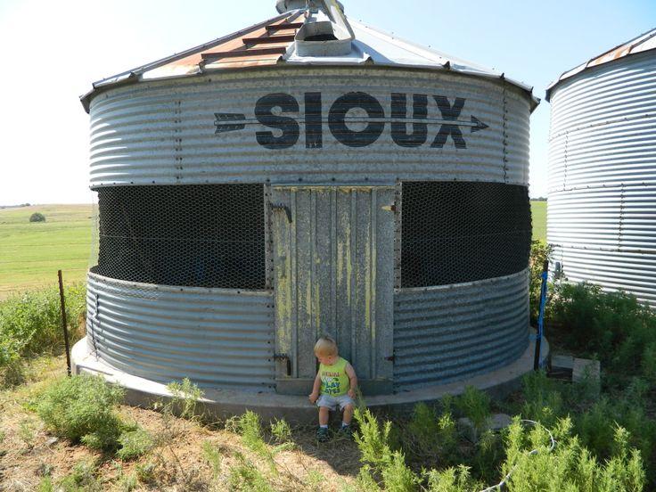 11 best grain bin images on pinterest gazebo grain silo for Gazebo chicken coop