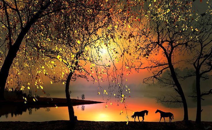 At The Sunset Digital Art