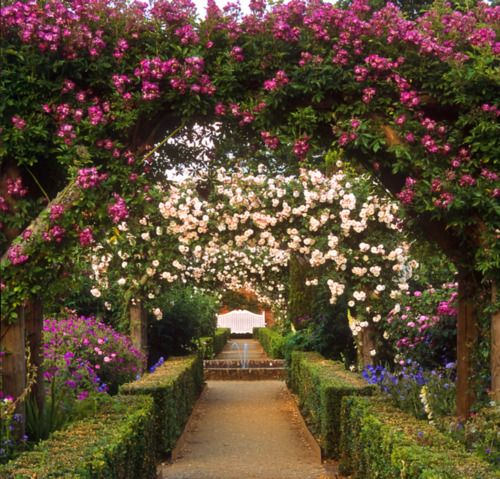 Close you eyes and dream of England. Mottisfont Abbey Gardens, in the southern county of Hampshire, England.