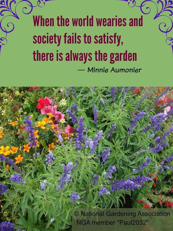 When the world wearies and society fails to satisfy, there ...