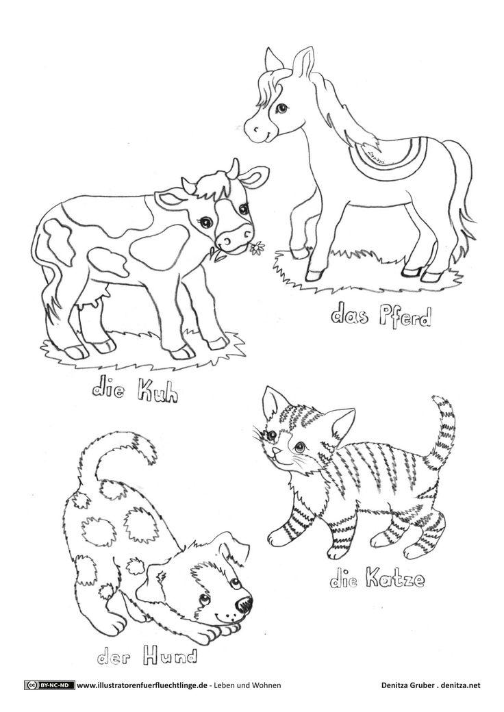 haustiere kuh pferd katze hund  haustiere hunde katzen