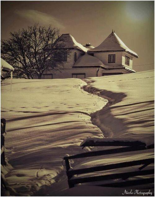 Iarna la Fundata    Foto: Nicole Photography    Surprising Romania - Împreună promovăm frumusețile României!