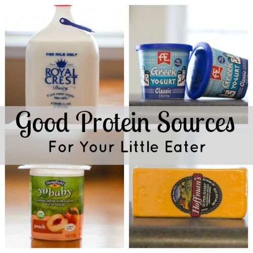 Good Protein Sources For Your Little Eater  How to get the most out of toddler nutrition.