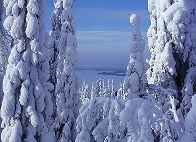 Winter in Kainuu