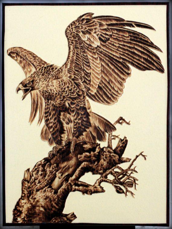 "Red tailed hawk landing, leadership, pyrography, leaf burned, 12""x16"""