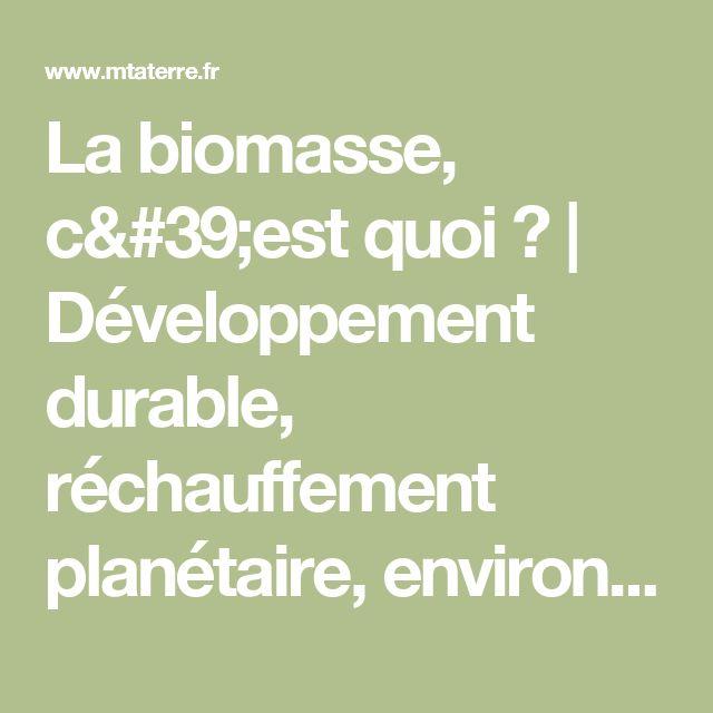 La biomasse, c'est quoi ? | Développement durable, réchauffement planétaire, environnement, énergies renouvelables - M ta Terre