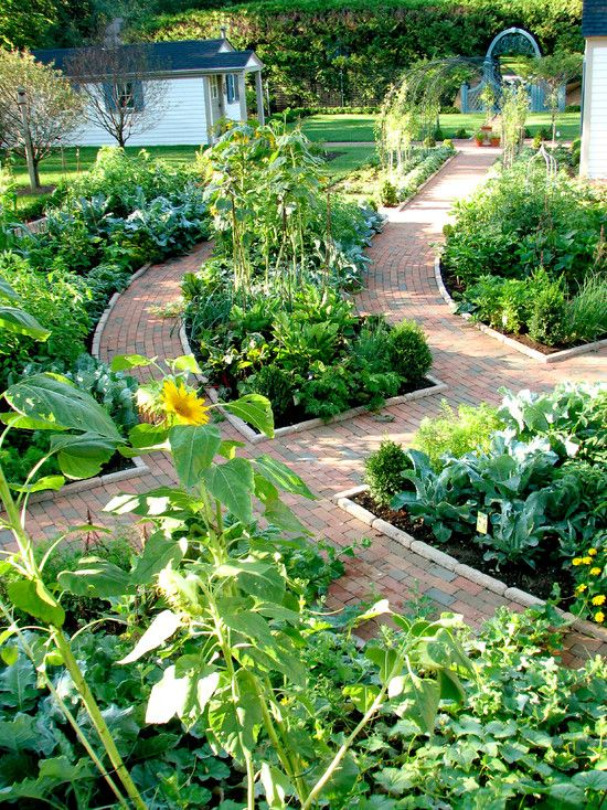 A french style garden that contains fruits, veggies, berries, herbs and flowers.