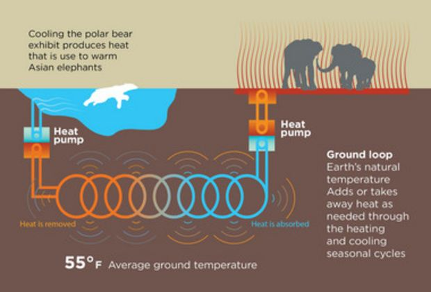 The Oregon Zoo constructs #sustainable system to transfer heat from polar bears to elephants.