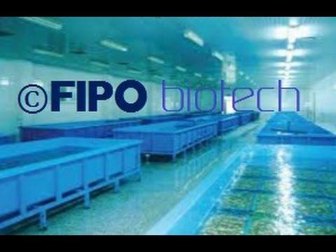 filtracion y desinfección de agua en depuradoras y cetareas e industrias...