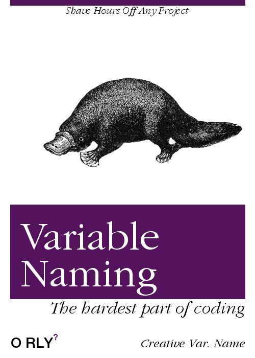 variable naming.jpg