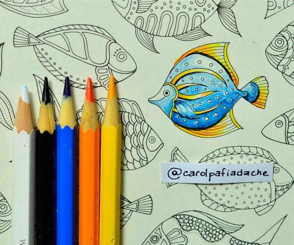Atelier Gina Pafiadache: Oceano Perdido - Lost Ocean - Colorindo Peixes (4)