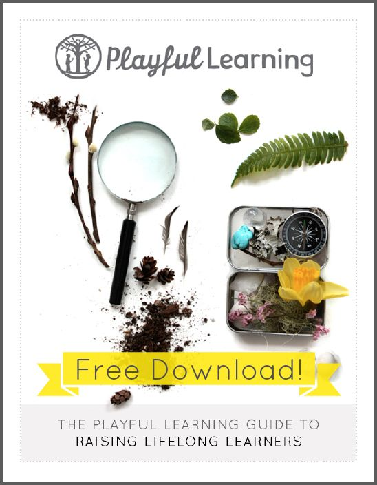 Free Gift! Playful Learning Guide to Raising Lifelong Learners