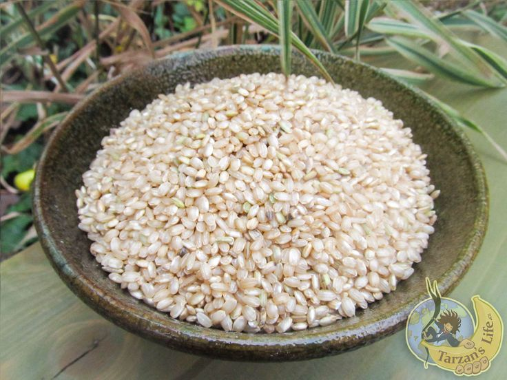 Rýže kulatozrnná natural / Rice natural  http://www.tarzanslife.cz/