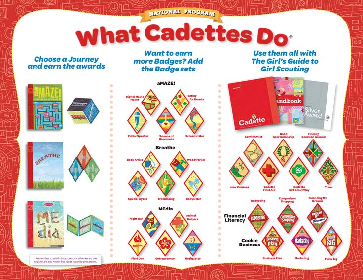65 best images about girl scout cadette badge ideas on