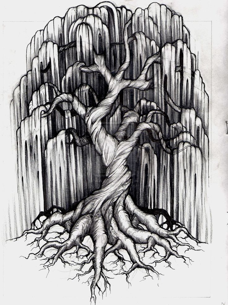 Willow tree design, would be an awesome tattoo