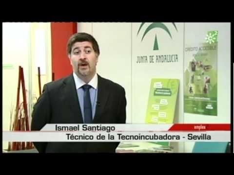 Proyectos empresariales innovadores combaten la crisis con el apoyo de Andalucía Emprende