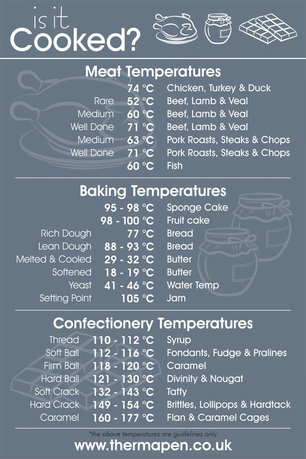 Professional Thermometer In 2019 Baking Meat Cooking