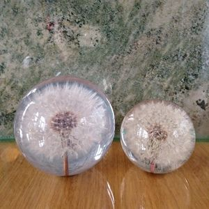 Paper Weight Dandelion
