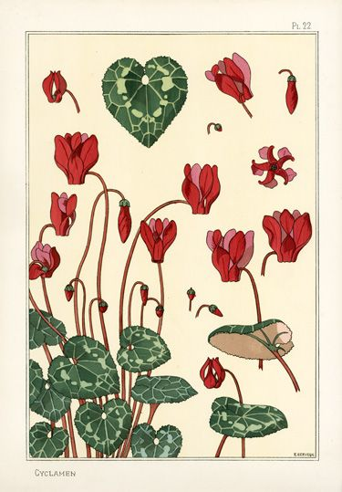 17 best images about cyclamen art decorations design on for Pochoir prints for sale