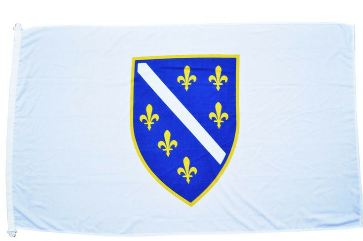 Bosnia and Herzegovina 1992-1998 Flag