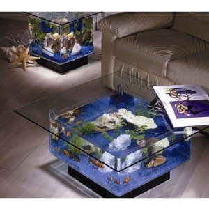 Midwest Tropical 675 Square Aquarium Coffee Table. Time to upgrade my living room :)