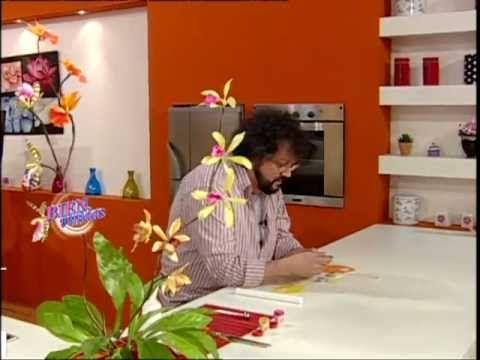 (3) Jorge Rubicce - Bienvenidas TV - Miniorquídeas en Porcelana Fría - YouTube