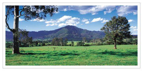 Home, Cambewarra Mountain