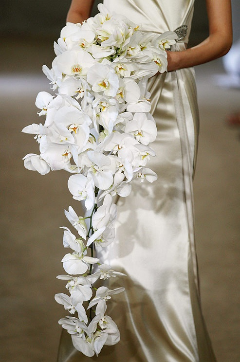 orchid flower for wedding 42 best images about orchid wedding bouquets on 6289