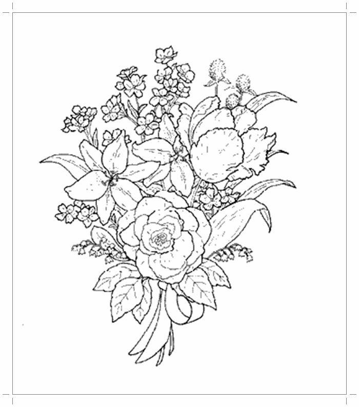 Рисунки цветов карандашом на открытку причиной развития