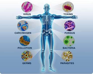 Sistem Imun merupakan Anugerah Tuhan Bagi Tubuh Kita - http://www.infosehatkeluarga.com/sistem-imun-merupakan-anugerah-tuhan-bagi-tubuh-kita/