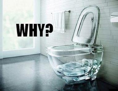 Clear Toilet Bowl - Bathroom Design Fail ----