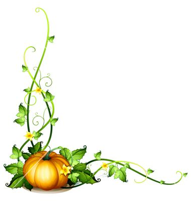 Pumpkin Vines Clip Art | pumpkin vine decor vector