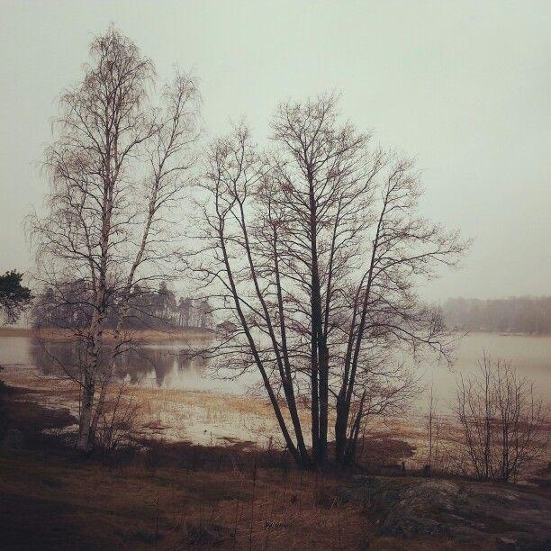 #Helsinki #Kulosaari #Finland #spring