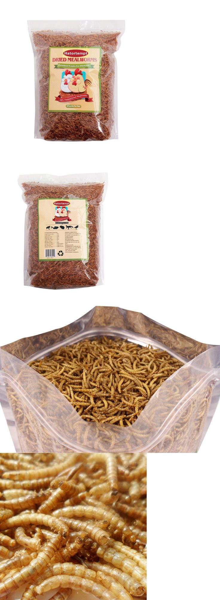 Backyard Poultry Supplies 177801: 5Lbs Bulk Dry Mealworms For Wild Birds Food Blue Bird Chickens -> BUY IT NOW ONLY: $33.99 on eBay!