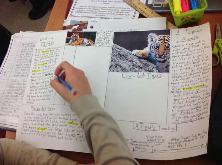 Teaching With a Mountain View: Nonfiction Text Structures & Features Activity