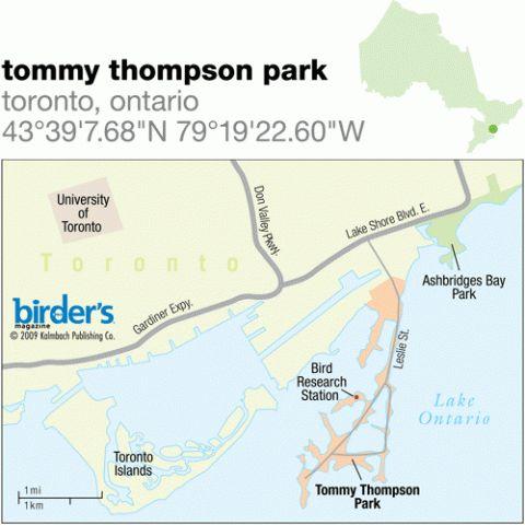 78. Tommy Thompson Park, Toronto, Ontario