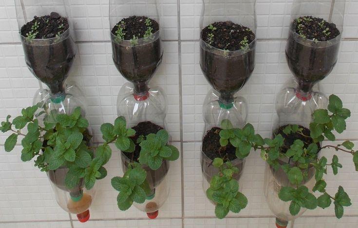 Oltre 25 fantastiche idee su vasi da giardino su pinterest for Vasi da giardino in plastica