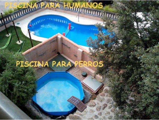 Una casa de campo en la Comunidad de Madrid para desconectar y donde tus mascotas podrán jugar, corretear libremente y hasta bañarse!! Un lujazo. Blog para viajeros | 5 planazos de verano con alojamientos aptos para tu mascota | http://blog.niumba.com