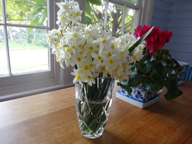 Jonquils and Cyclamens