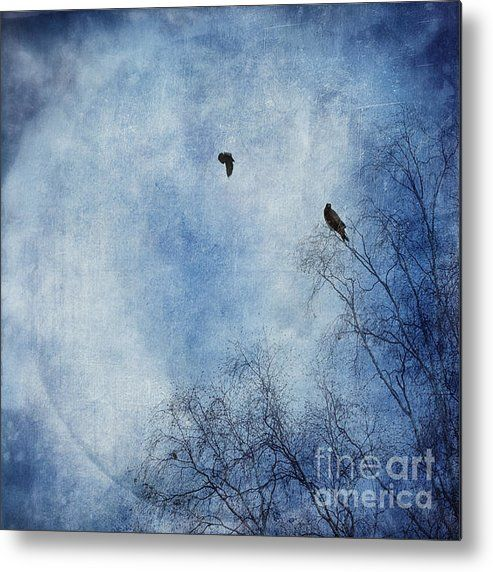 Come Fly With Me Metal Print By Priska Wettstein
