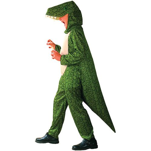 Boy's Dinosaur Fancy Dress Costume M/L Prehistoric Godzilla £10.99