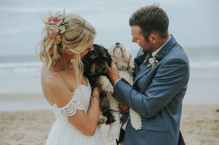 Flower crowns for the dogs. Flowers by asdaisydoes, Photography by Smitten Wedding Photography