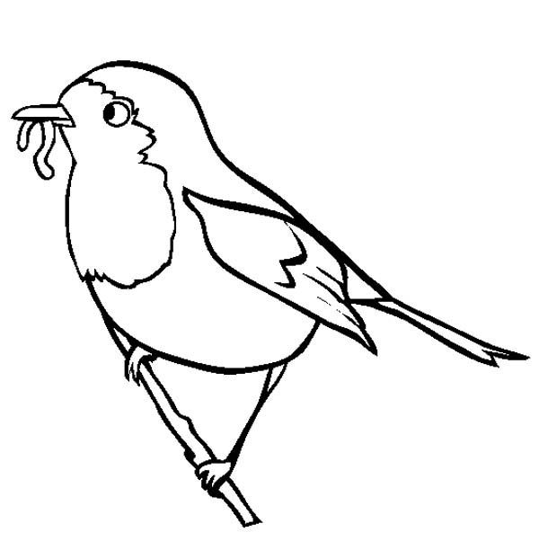Robin, Robin Eating Worm Coloring Page: Robin Eating Worm