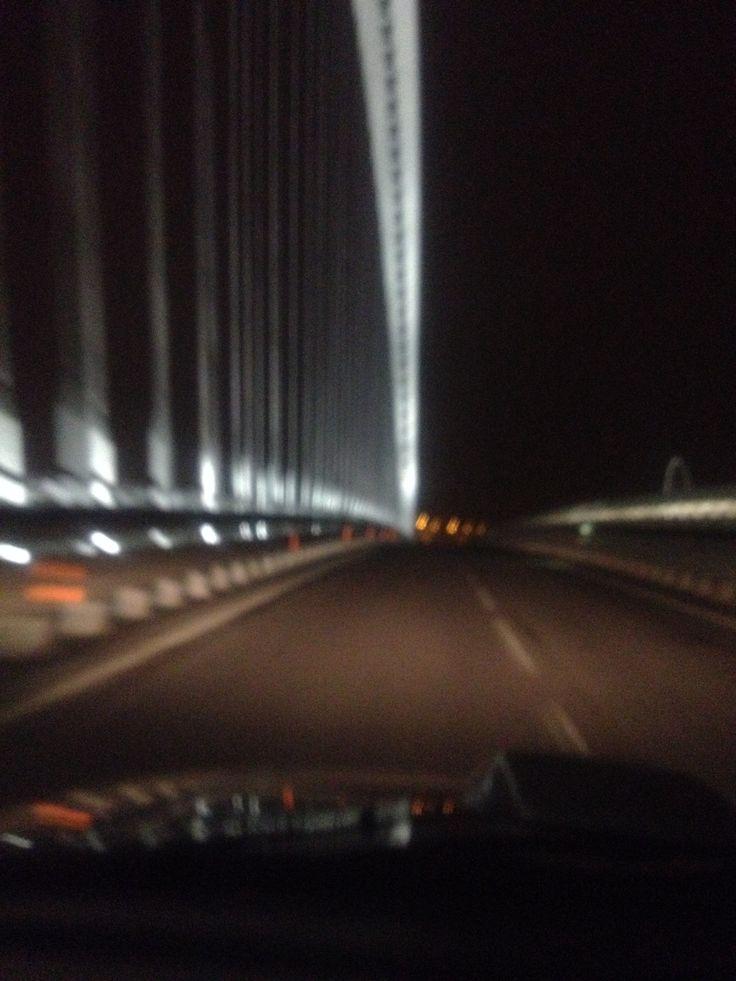 Reggio Emilia Ponti di Calatrava