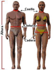 Calculadora de dieta y porcentaje de grasa corporal