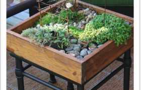 What a Great Container Garden!